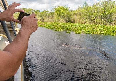 Enjoy a Classic Orlando Airboat Ride