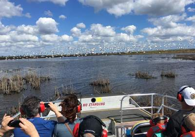 Our Top New Year's Resolutions for Orlando Airboat Rides Lovers